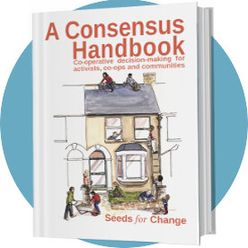 Cover of A Consensus Handbook